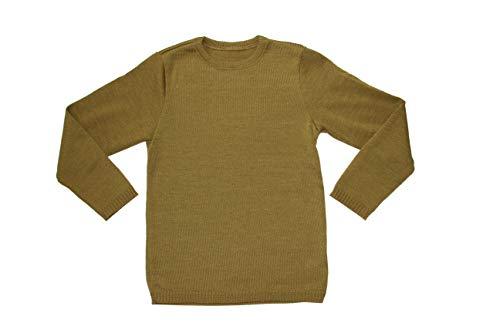 Disana Basic-Pullover 100% Bio-Merino-Schurwolle (Gold, 122/128)