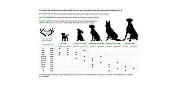ARTISAN GIFT CO Bois de Cerf Tranché 100% Naturel - Taille L - 1 Unité – Poids Min. 81g - Idéal pour Les Chiots, Les Chiens Plus Âgés et Les Mordants Légers