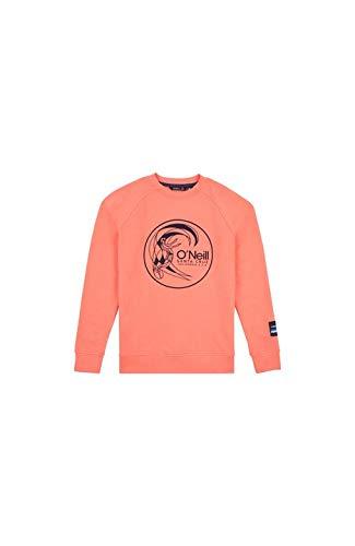 O'NEILL LB Circle Surfer Crew Sweat-Shirt à Manches Longues pour Enfant L Orange (Mandarine)