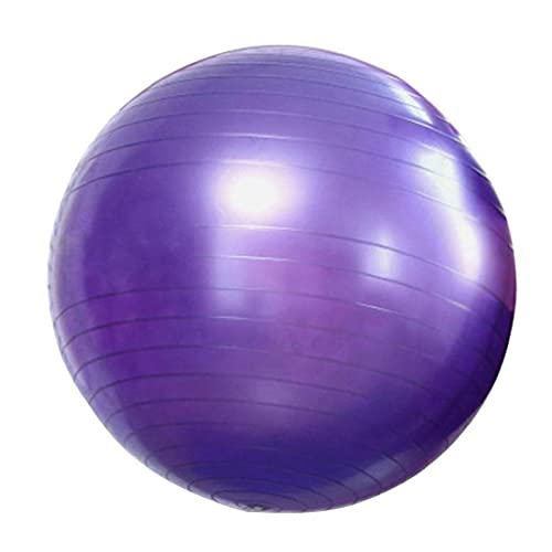 Eaarliyam Bola de la Gimnasia Soporta Yoga Bola del Ejercicio de la Aptitud de Estabilidad contra la explosión de Bola por el Yoga, Pilates, Fitness Embarazo púrpura Trabajo 65cm