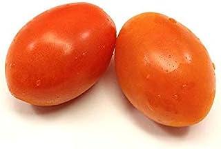 Tomato Roma Plum Holland | Mild & Sweet Flavor | Tender Firm & Thin Skin | Tangy & Savory | Full Of Juicy | Premium Qualit...