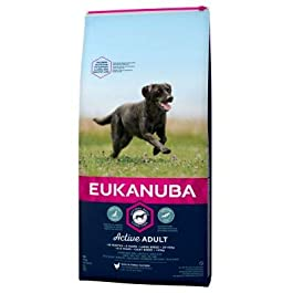 Eukanuba Active Adult Large Breed Rich In Fresh Chicken Dog Food 1+ Free 2kg