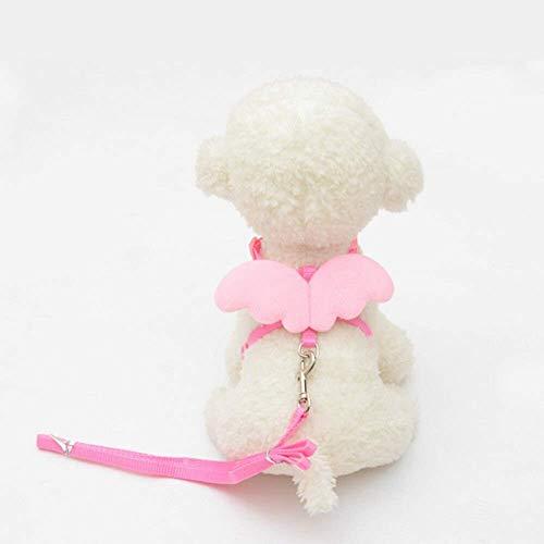 Perro plomo lindo ángel mascota perro correas y collares conjunto Perrito cables para perros pequeños gatos diseñador ala ajustable perro arnés accesorios mascotas m rosa ( Color : Pink , Size : M )
