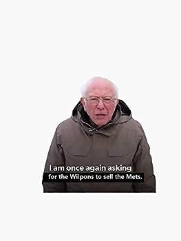 Bernie Sanders Financial Support Meme - Mets Bumper Sticker Vinyl Decal Waterproof Window Sticker 5