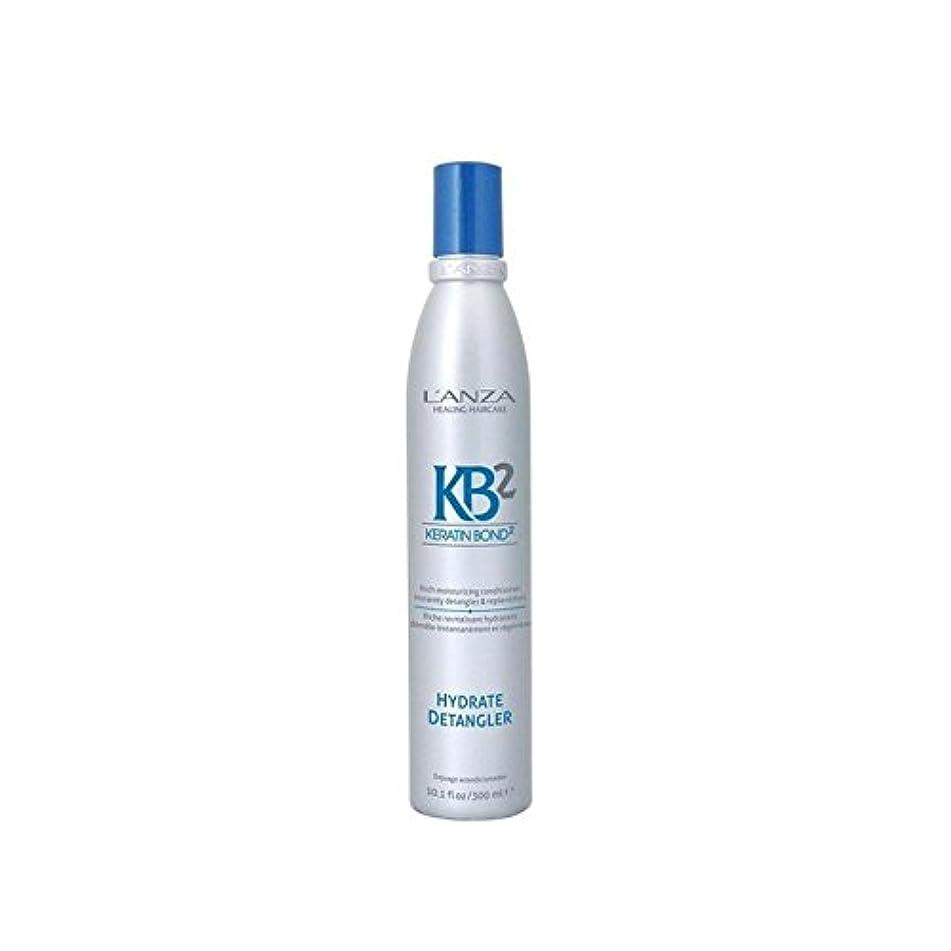 偽物アカデミックスキルL'Anza Kb2 Hydrate Detangler (300ml) - アンザ2和物(300ミリリットル) [並行輸入品]