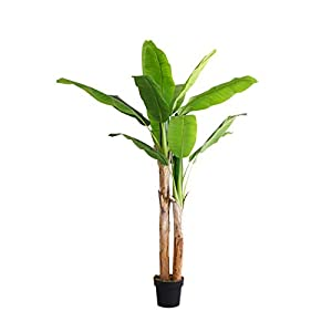 Artificial Banana Tree,Fake Silk Plant,70in Tropical Palm Tree,Potted Front Door Plant,Fake Tropical Split Leaf Plant for Office House Living Room 2trunks