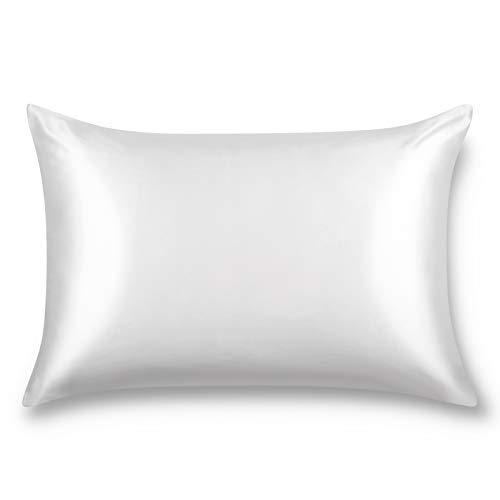 ALASKA BEAR Natural Silk Pillowcase, Hypoallergenic, 19 Momme, 600 Thread Count 100 Percent Mulberry Silk, Queen Size with Hidden Zipper (1, Cool White)