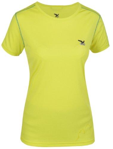 Salewa Innerkofler Dry W T-Shirt à Manches Courtes pour Femme Medium Vert - Jaune