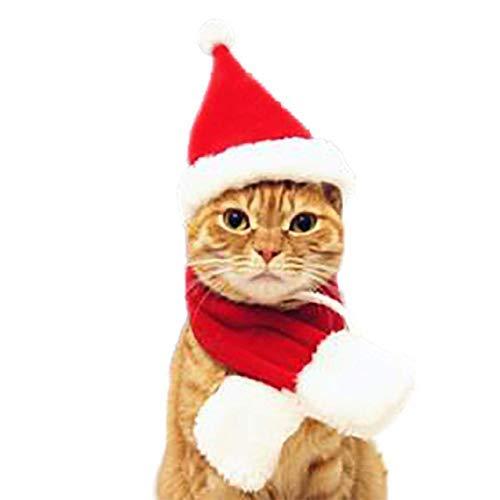 Yslin Pant Latzhose Notable Haustier Hund Berühmt Weihnachten Kostüm Hut Schal Anzug Mantel Moderne Geschnürt Perfekt Jahr in Feinem Stil (Keiner L...