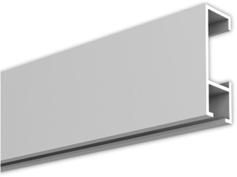mejor marca Rieles para cuadros, Cocheril de la Galería, 100 100 100 Metro, plata  Las ventas en línea ahorran un 70%.