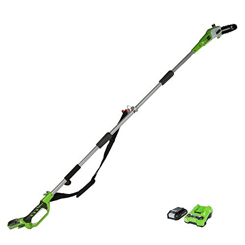 Greenworks Battery Tall Probe G24PS20K2 (Li-Ion 24 V 20 cm longitud de espada 6.67...