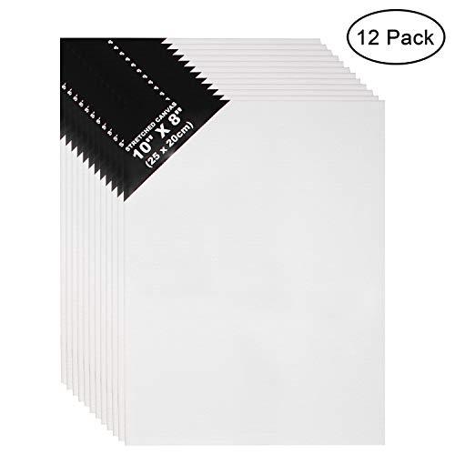 Leinwand Set (12er Set) - L25 x W20cm Leinwand-Panel - 3mm dick Weiße Leinwände für Bilder, Kunst - Leere Leinwand zum Bemalen - Leinwand für Acrylmalerei und Ölfarbe