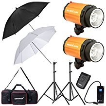 Neewer 600W Photo Studio Monolight Strobe Flash Light with Umbrella, Light Stand, RT-16 Wireless Trigger, Carrying Bag Lighting Kit for Video Shooting, Location and Portrait Photography (300SDI)