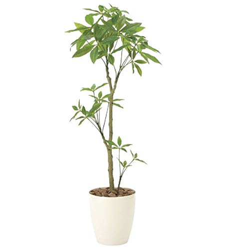 光触媒「V-CAT」を使用人工観葉植物●光触媒 光の楽園 パキラ1.3m