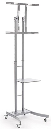 Displays2go MB863ESLV Portable TV Stand with Wheels for LCD/Plasma/LED TVs Between 32 & 65 Inch, Steel