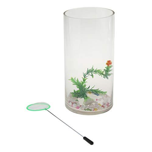 FLAMEER Mini Acquario, Mini Serbatoio da Pesca in Vetro, Mini Fish Tank, Serbatoio di Vetro Cilindrico, Sistema Acquario Ecologico - 2