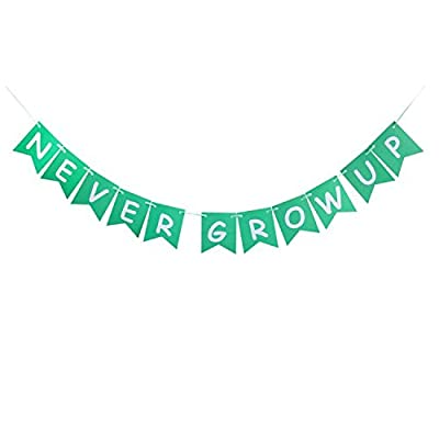 Never Grow Up Banner, Kids Baby Birthday Party Sign, Decorations Party Bunting