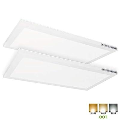 1x2 FT LED Flat Panel Ceiling Light, 24W Ultra Slim Edge-Lit Panel Light Fixture, 3/4/5K CCT, 2400lm, Built-in Driver Surface Mount Light for Kitchen Garage Basement, ETL Listed, 2 Pack