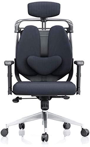 Bürostuhl Aluminiumlegierung Füße Heben Armlehnen Doppelrückstuhl Ergonomischer Computerstuhl Chefstuhl Studentenstuhl Gaming Stuhl, Blau MISU (Color : Black)