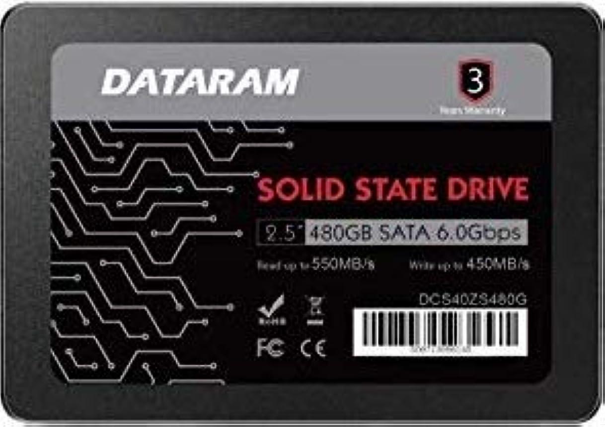 フローまたね名前DATARAM 480GB 2.5インチ SSDドライブ ソリッドステートドライブ BIOSTAR HI-FI B150S1 D4に対応