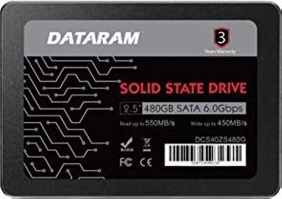 遺伝的考案する繁殖DATARAM 480GB 2.5インチ SSDドライブ ソリッドステートドライブ GIGABYTE P37X V5に対応