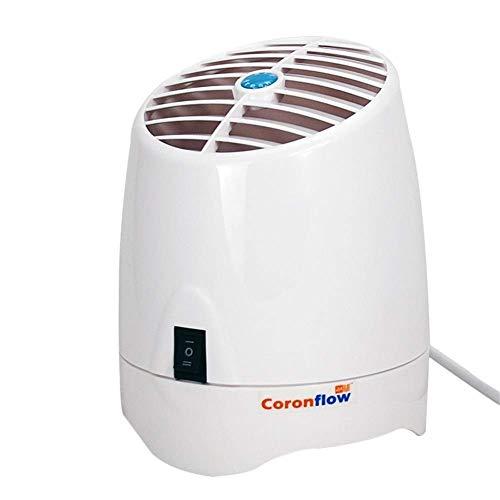 Znesd Purificador de Aire for el hogar con los filtros, el hogar y la Oficina purificador de Aire con máquina de aromaterapia, generador de ozono y el ionizador (Color : Gl2100)