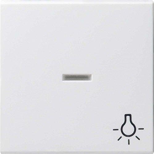Gira Wippe 067427 Kontroll Sym Licht System 55 rw m