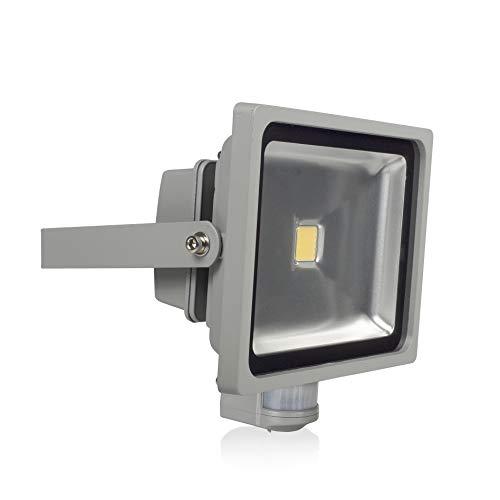 Ranex XQ1224 Projecteur LED 30 W avec Détecteur de Mouvement Verre Gris