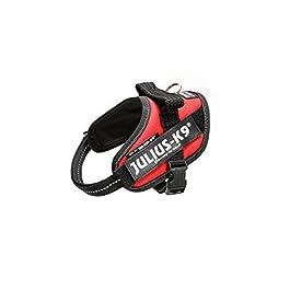 Julius-K9, 16IDC-R-MM, IDC Powerharness, dog harness, Size: XS/Mini-Mini, Red