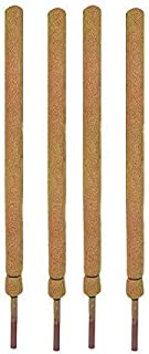 COIR GARDEN-Coco Pole 4 Feet (120 cm) - 4 Pieces - Moss & Coir Stick for Money Plant Support, Indoor Plants, House Plants ...