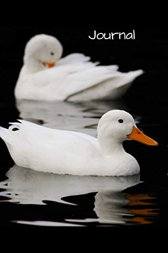 Journal: Stunning and elegant picture of beautiful white ducks in water. This notebook is for writing in or drawing in. Will make a lovely gift for people easily distracted by ducks.