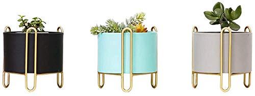 Soportes para Plantas Planta de soporte redonda Flor Mini Plataforma Bonsai sostenedor de la exhibición carnosas suculentas en maceta rack for el hogar decorativo de escritorio 1010 ( Size : Gray )