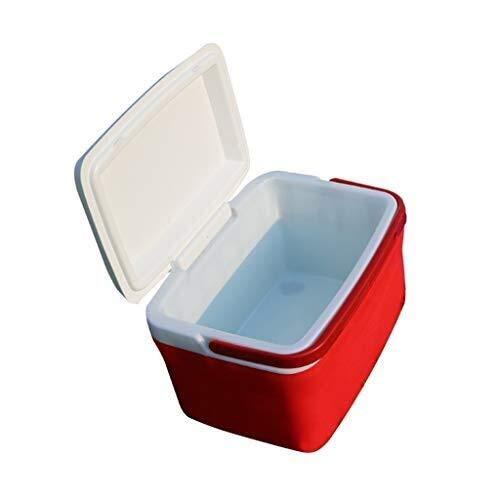 Picnic Cooler Box - Caja De Aislamiento...