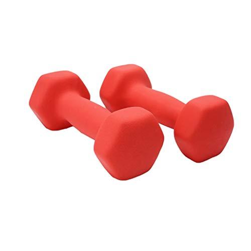 ZZL Mancuerna Aptitud Mancuerna Pesos Pesados Manijas Barra Matal de Entrenamiento de la Fuerza Principal Ejercicio de la Gimnasia Equipmen Fitness (Color : Red, tamaño : 2KG (1kg*2))