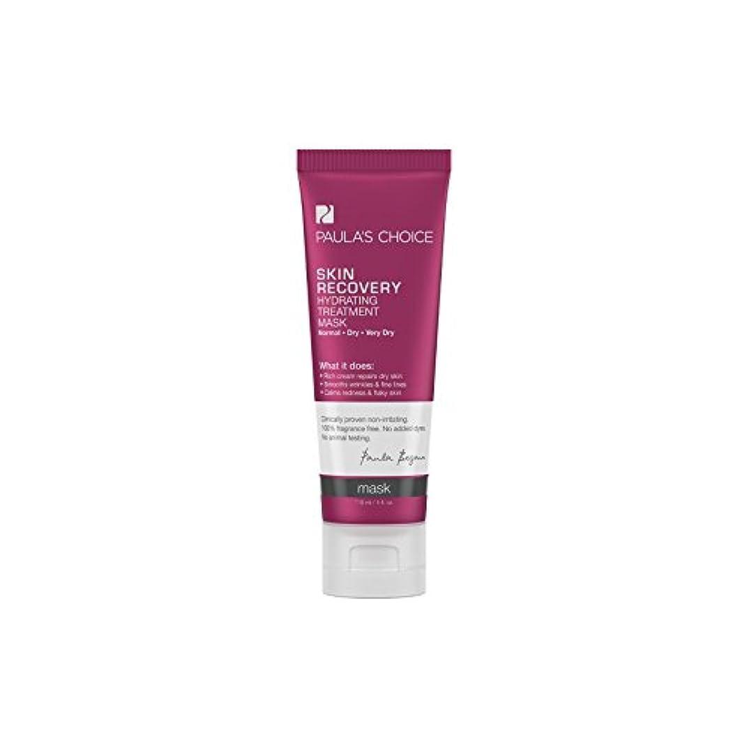 上げる古いなめらかポーラチョイスの肌の回復水和処理マスク(118ミリリットル) x2 - Paula's Choice Skin Recovery Hydrating Treatment Mask (118ml) (Pack of 2) [並行輸入品]