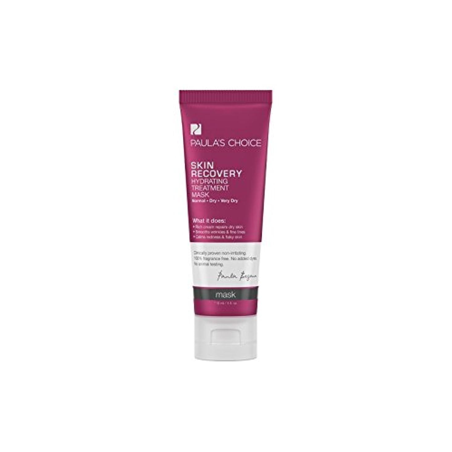 寛大さ迷惑批判的ポーラチョイスの肌の回復水和処理マスク(118ミリリットル) x2 - Paula's Choice Skin Recovery Hydrating Treatment Mask (118ml) (Pack of 2) [並行輸入品]