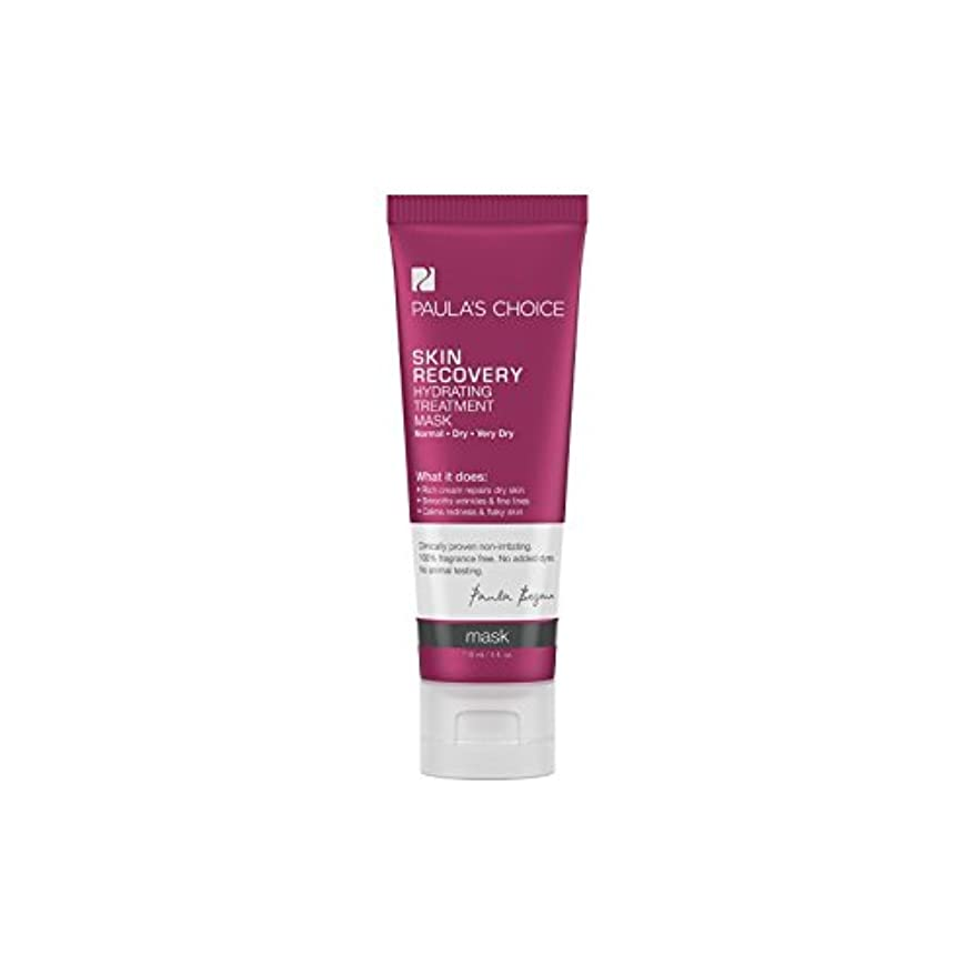 穴にじみ出る夜明けPaula's Choice Skin Recovery Hydrating Treatment Mask (118ml) (Pack of 6) - ポーラチョイスの肌の回復水和処理マスク(118ミリリットル) x6 [並行輸入品]