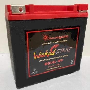 Motorcycle Battery; RG14L-WS 350 CCA
