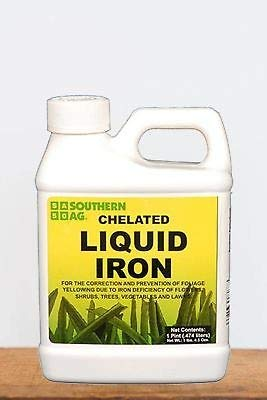 Southern Ag Chelated Liquid Iron, 16oz-1 Pint
