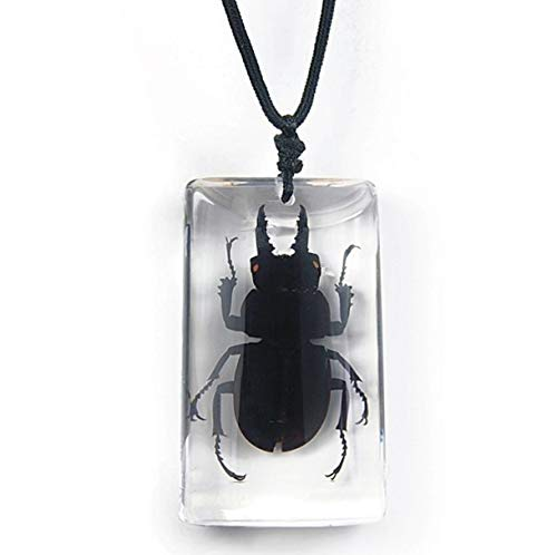 BicBugs Now free shipping stag Beetle Black Necklace Chicago Mall