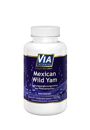 Mexican Wild Yam 750 mg pro Kapsel - 120 vegane Kapseln, über 40.000 zufriedene Kunden, 2-Monatsangebot, kein Extrakt, die reine Wurzel, in Deutschland hergestellt, ohne Zusatzstoffe