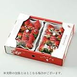 いちごさん AA 大粒 4L~3Lサイズ 約270g×2パック 佐賀県産 JA佐賀 白石地区 苺