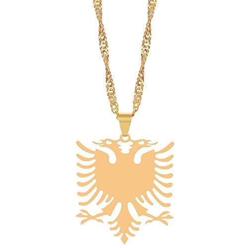 U/K Necklaces for Men's Albania Adler Pendant Necklaces Gold Color & Stainless Steel Jewelry Ethnic Gifts For Women Men 40cm (Color : 1)