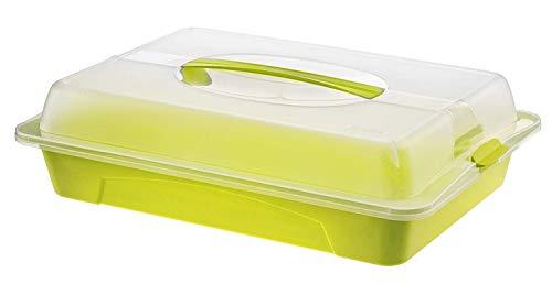 Rotho Cool & Fresh Partybutler mit Kühlung, Haube und Tragegriff, Kunststoff (PP) BPA-frei, grün, (43,5 x 29,5 x 11,0 cm)
