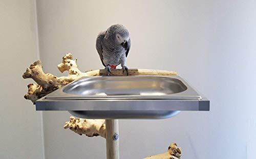 Vogel Badewanne Vogelbadehaus Vogelbadewanne Papageien Badehaus Vögel Papageien Vogelkäfig Voliere