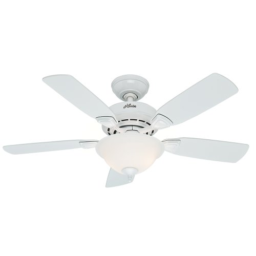Hunter Fan Company 52080 Hunter Caraway Indoor ceiling Fan with LED Light and Pull Chain Control,...