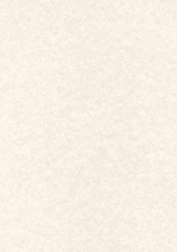 Champagne A3 Decadry PCL1807 Carta Pergamenata Confezione da 25 165 G//Mq