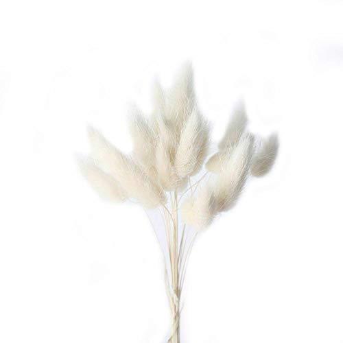 Xianshiyan Ramo de flores secas, 1 ramo de flores secas, decoración del hogar