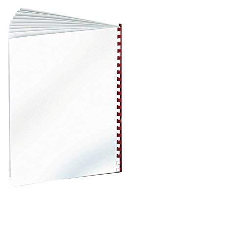 Renz Rückwände, DIN A4, chromo einseitig glänzend, 250 g/qm, weiß