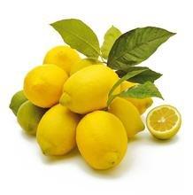 50 pièces / sac Lemon Tree Seeds haut taux de survie bonsaï Fruit Graine Pour Graines jardin Bonsai fleurs